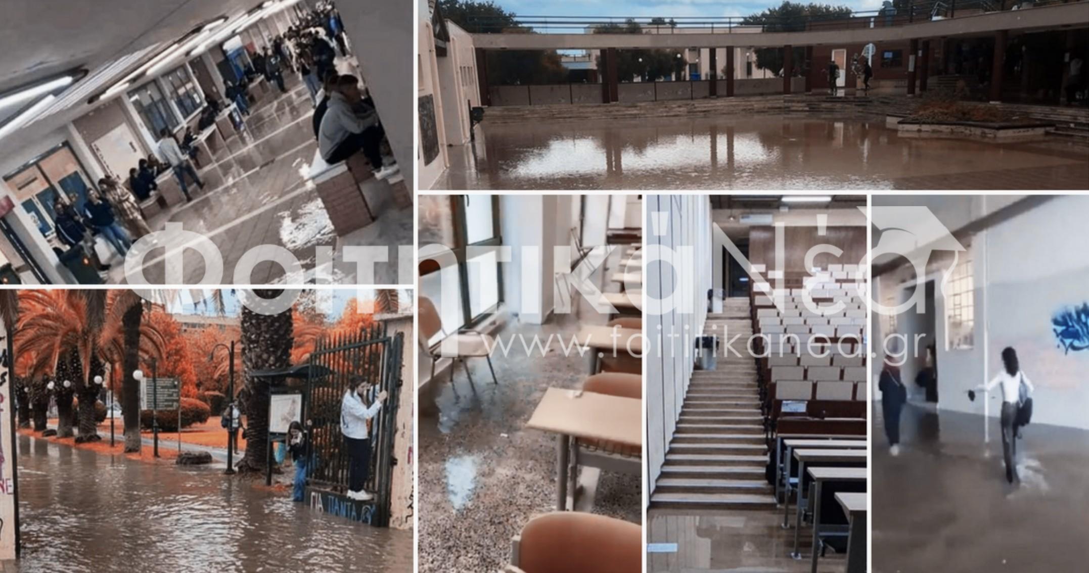 Πλημμύρισαν Πανεπιστήμια - Αποκαρδιωτικές εικόνες & βίντεο