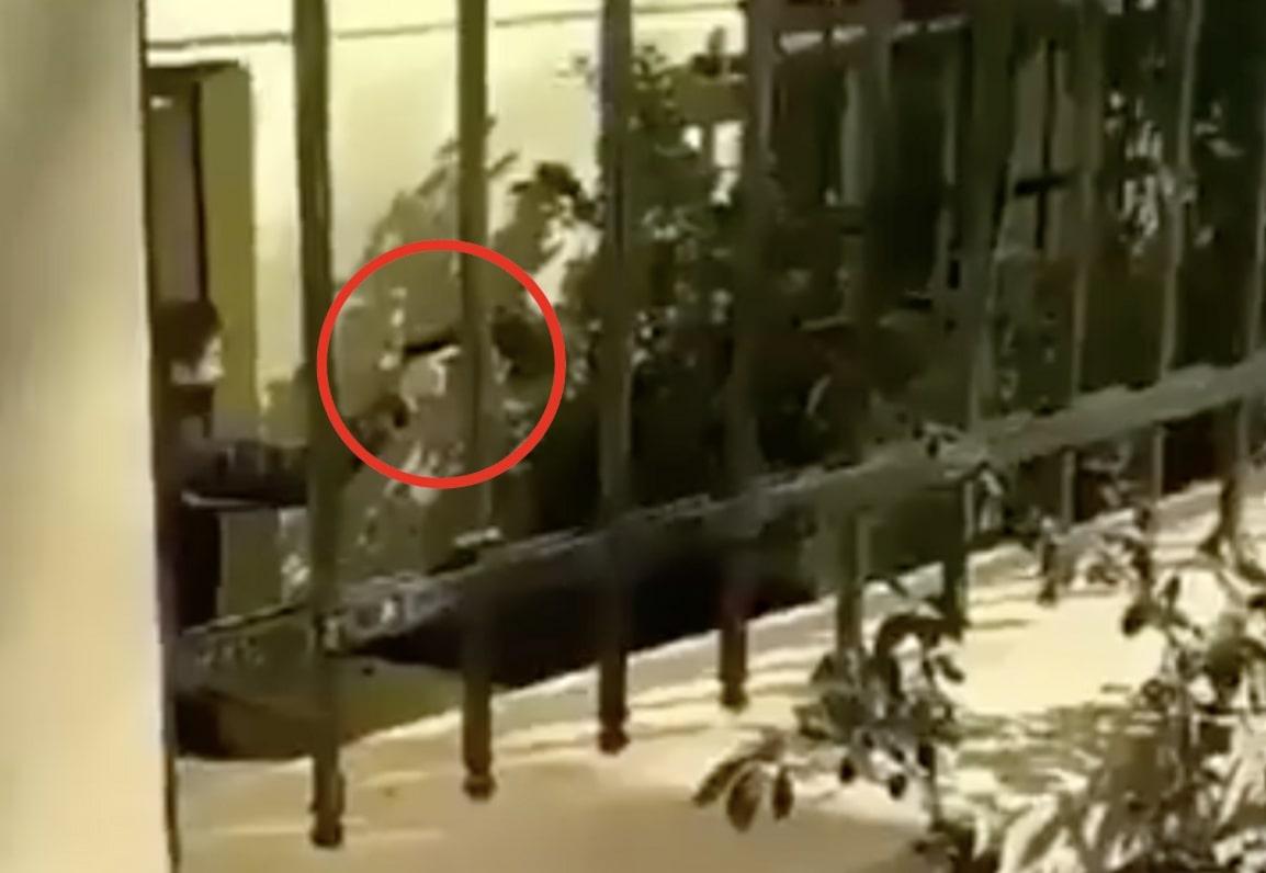 ΒΙΝΤΕΟ ΣΟΚ: Αστυνομικός με πολιτικά έβγαλε όπλο μέσα στην ΑΣΟΕΕ!